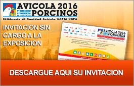 Invitacion Online